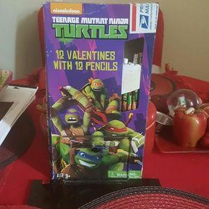 Other - teenage Mutant ninja turtles 12 valentine's and pe
